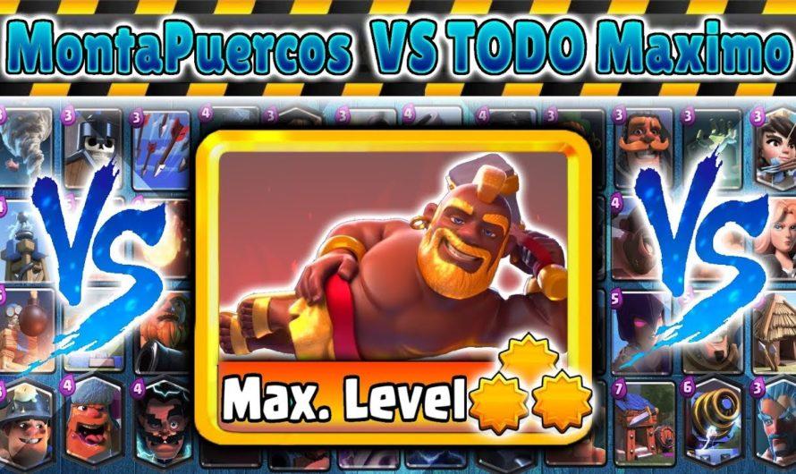 MontaPuercos Dorado VS TODO Maximo